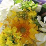 アクアゆめクラブ ♫スポーツ婚活♫